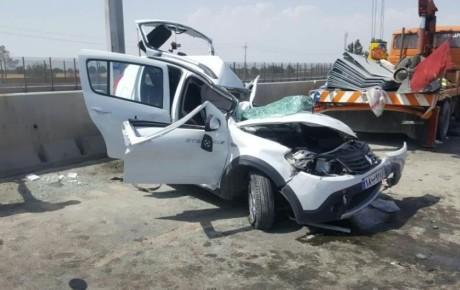 انگل توکسوپلاسما آمار تصادفات رانندگی را افزایش میدهد!
