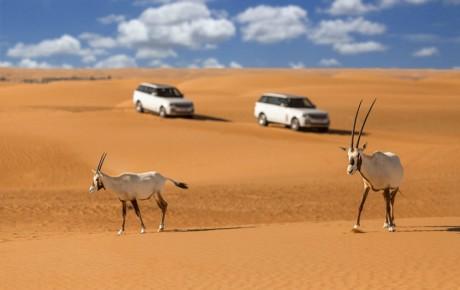 ورود خودروهای آفرود به کویر مرنجاب ممنوع شد