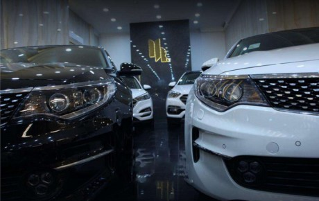 امید نمایندگان به رفع ممنوعیت واردات خودرو