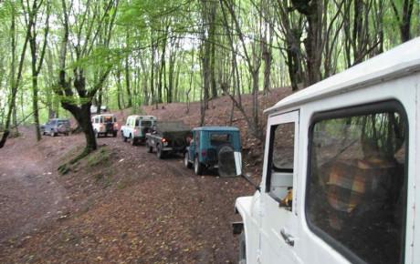 آفرود سواری در جنگل ممنوع است